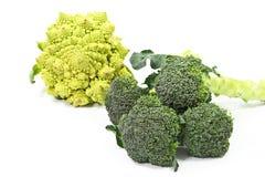 Brokkoli-Vielzahl Lizenzfreie Stockfotos