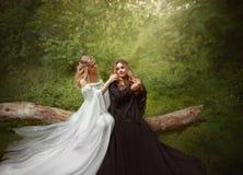 Zwei verschiedene blonde Mädchen, das Gegenteil von Weiß und schwarze Magie Die jüngere Schwester flicht die ältere ` s Borte und Stockbilder