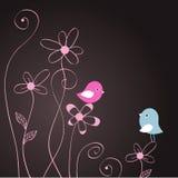 Zwei Vögel in der Liebe Lizenzfreies Stockbild