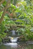 Zwei Wasserfälle in den versunkenen Gärten stockfotografie