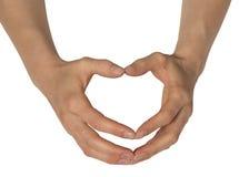 Zwei weibliche Hände Stockfotografie
