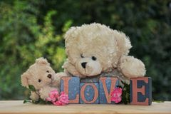 Zwei weiße Teddybären mit Liebessteinen Stockfotografie