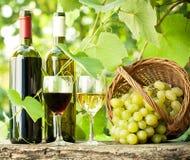 Zwei Weinflaschen, zwei Gläser und Trauben im Korb Lizenzfreies Stockfoto