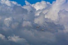 Zwei Weinleseflugzeuge DC-3 fliegen in den Himmel stockbild