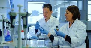 Zwei Wissenschaftler, die im Labor 4k experimentieren stock video footage
