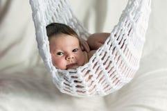 Zwei-Wochen-altes Baby in der Hängematte Lizenzfreie Stockfotos
