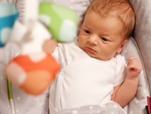 Zwei Wochen-altes neugeborenes Baby Lizenzfreies Stockfoto