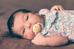 Zwei-Wochen-altes neugeborenes Baby, das sich mit einem Friedensstifter hinlegt Stockfoto