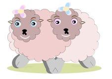 Zwei wollig und sympathische Schafe lizenzfreie abbildung