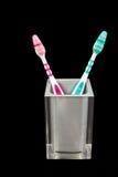 Zwei Zahnbürsten in einem halb transparenten Behälter Lizenzfreie Stockbilder