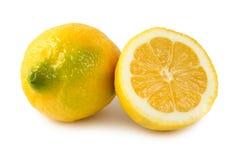 Zwei Zitronen Lizenzfreies Stockfoto