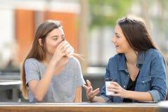 Zwei zufällige Freunde, die Kaffee in einem Park sprechen und trinken lizenzfreies stockfoto
