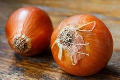 Zwei Zwiebeln auf einem alten Holztisch Lizenzfreies Stockfoto
