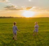 Zwei Zwillingsmädchen, das in der Wiese bei Sonnenuntergang spielt Glückliche Kindheit lizenzfreie stockfotografie