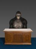 Zweifelhaftes Geschäft Gorilla Office Desk Lizenzfreie Stockfotografie