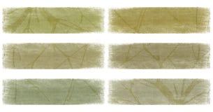 Zweig auf dem Nullerdeton-Fahnenset getrennt Lizenzfreies Stockbild