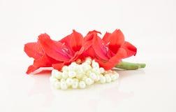 Zweig der Blumen und der Halskette von der Birne Lizenzfreie Stockfotos
