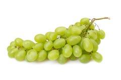 Zweig der grünen Trauben Stockfoto