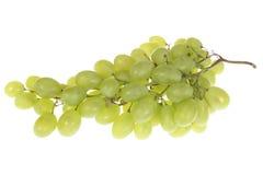 Zweig der grünen Trauben Stockfotografie