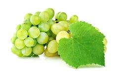 Zweig der grünen Trauben Lizenzfreie Stockbilder