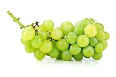 Zweig der grünen Trauben Stockbild