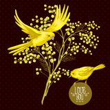Zweig der Mimose und des gelben Vogels, Frühlings-Hintergrund Lizenzfreie Stockbilder