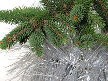 Zweig der Pelzbäume, Weihnachten ein Baum Stockfotos