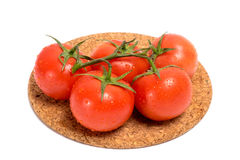 Zweig der roten Tomate mit Wasser fällt auf eine Korkenbasis Lizenzfreie Stockfotos