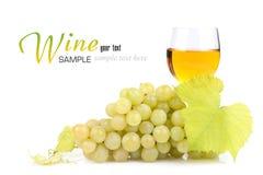 Zweig der Trauben und des Glases Weins Stockbilder