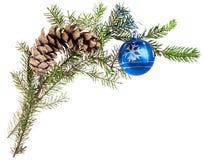Zweig des gezierten Baums mit Kegel und blauem Ball Lizenzfreies Stockfoto