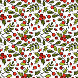 Zweig des Mistelzweiges Rowan Berries Zweige und Blätter Nahtloser Vektormusterhintergrund stockfotografie