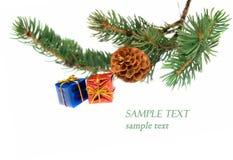 Zweig des Weihnachtsbaums und der Geschenke Lizenzfreies Stockbild