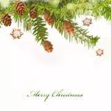 Zweig des Weihnachtsbaums und des Lebkuchens Lizenzfreie Stockfotos