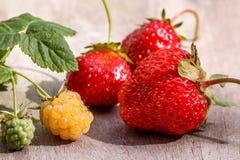 Zweig von gelben Himbeeren und rote reife Erdbeeren sind nicht grauer Holztisch Lizenzfreies Stockbild
