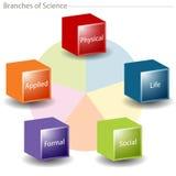 Zweige der Wissenschaft stock abbildung