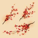 Zweige des roten Ahornholzes im Herbst Lizenzfreies Stockfoto