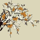 Zweige mit Blumen lizenzfreie abbildung