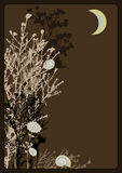 Zweige nachts Lizenzfreie Stockbilder