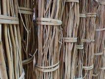 Zweige zusammen gebunden Stockfoto