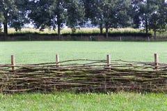 Zweigzaun mit einem Maisfeld im Hintergrund stockbild