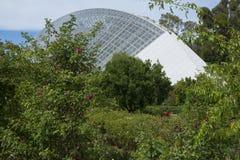 Zweihundertjähriges Konservatorium, Adelaide Botanic Garden, SA: Kein perso Lizenzfreie Stockfotos