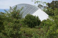 Zweihundertjähriges Konservatorium, Adelaide Botanic Garden, SA: Mit Mann Stockfotos