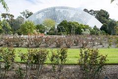 Zweihundertjähriges Konservatorium und Rose Garden, Adelaide Botanic Gard Lizenzfreie Stockfotos