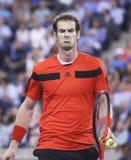 Zweimal Grand Slam-Meister Andy Murray während des vierten Rundenmatches an US Open 2013 gegen Denis Istomin bei Arthur Ashe Stadi Stockbilder