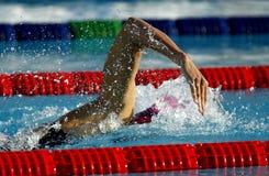 Zwem de concurrentie Stock Afbeeldingen
