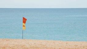 Zwem hier vlag bij het strand stock videobeelden