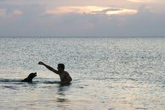 Zwem hond! royalty-vrije stock foto