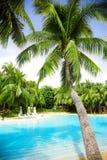 Zwembad Royalty-vrije Stock Afbeeldingen