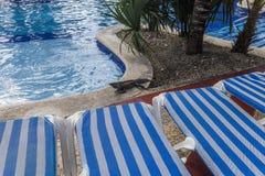Zwembad in Cancun, Riviera Maya, Mexico Royalty-vrije Stock Foto