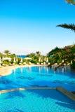Zwembad in de mooie groene tuin Royalty-vrije Stock Foto